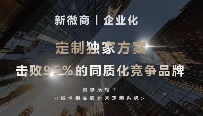 微镖局创始人玄武 推出中国微电商界的新微商企业化转型