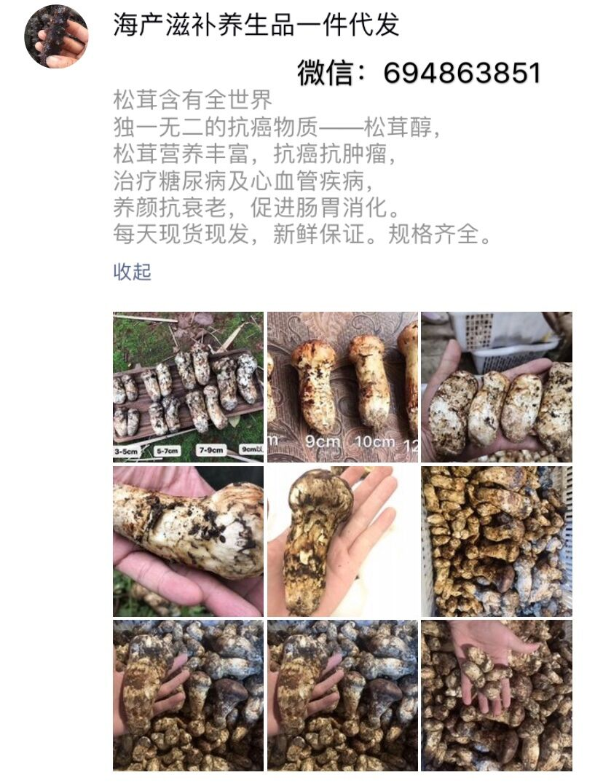 西藏那曲冬蟲夏草,批發貨源,微商一件代發,誠招代理